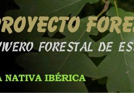 proyecto forestal iberico