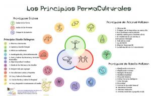 los-principios-permaculturales